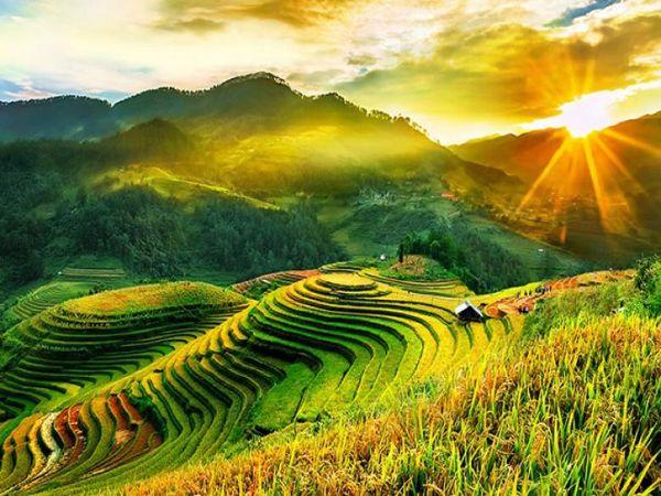 Nằm mơ thấy cánh đồng là điềm báo lành hay dữ?